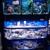 Saltwater Reef Shop Inc