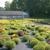 Roebuck Greenhouses Inc