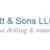 C Dewitt & Sons