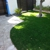 Monster Grass and Turf