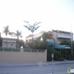 Royal Palms Villas