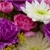 Blossoms & Stems Florist & Greenhouse
