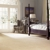 Schindler Carpet & Upholstery Cleaning