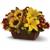 Sabellico Greenhouses-Florist Inc