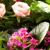 Country Treasures Florist Inc