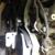 RCT Automotive, LLC