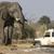 Land Rover Auto Specialist Repair & Service