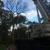 DC Tree Services