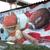 Airbrush and Graffiti Artist - Paws21art.com