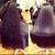 Avanti Hair Salon