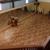 Capoeira Besouro Hawaii Academy