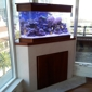 California Custom Aquariums - San Diego, CA