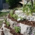 Tony Johnson Landscaping
