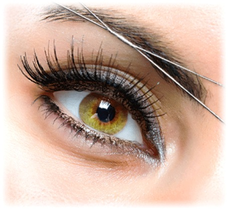 Natural Eyebrow Threading Pittsburgh Pa 15232 Yp Com