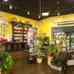 Bumblebee Blooms Flower Boutique LLC