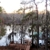Caddo Lake Lodging