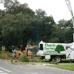 Davis Tree Service, Inc