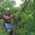 Green Mountaineers Tree Service