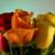 J & L Heavenly Florist