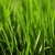 R-R Landscaping & Irrigation