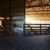 Murphy Stables