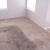 Higens Carpet & Upholstery Cleaning