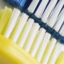 Toothbrusher's Dental