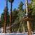Granlibakken Resort