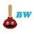 BW Handyman Services