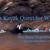 Sea Quest Kayak Tours