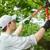 Bostwick Tree Service