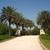 Florida Landscape & Nursery