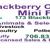 Blackberry Creek Mini Farm