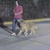 JCM's Dog Training & Pet Boarding