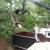 Higley's Tree Service