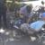 Ding! Bikes