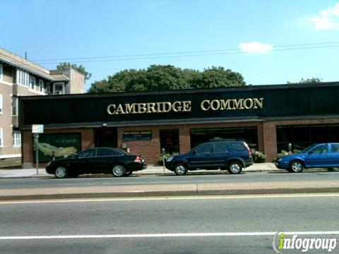 Cambridge Common, Cambridge MA