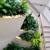 Greenleaf-Interior Plant Solutions