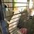 Chaar Saddlery Farm & Pet