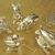 Forsythe Jewelers Inc