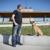 Canine Cohen Dog Training and Behavior Modification