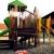 Children's World Bilingual Montessori