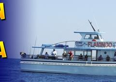 Flamingo Deep Sea Fishing - Fort Lauderdale, FL