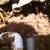 Redlands Sprinkler Repair