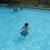 Coplay Community Pool