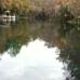 Treasure Camp On The Suwannee