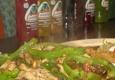 Mariachi De Oro Mexican Grill - Medina, NY