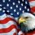 American Cash Advance & Title Loans