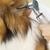 Picayune Veterinary Clinic