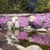 Cross Creek Nursery & Landscaping